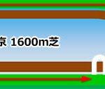 安田記念のコース攻略!東京競馬場1600m(芝・左)の特徴