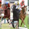 安田記念(2016)の有力馬5頭をピックアップ!